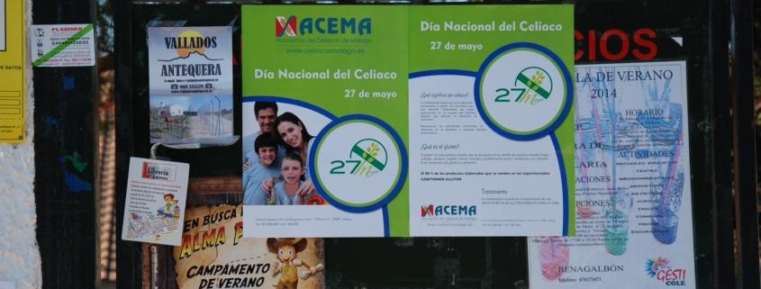Dia del Celiaco Rincon Victoria Colegio 01